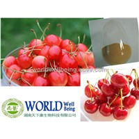 Acerola Cherry Extract Powder With 17%-25% Vitamin C
