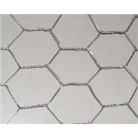Chicken wire mesh - hexagonal wire netting for plastering