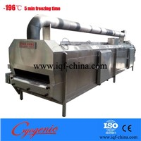 China stainless steel liquid nitrogen quick freezing tunnel