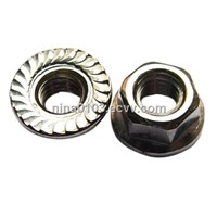Flange Nut - Stainless Steel - DIN 6923