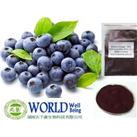 Fuctory Supply Bilberry Extract Powder With Anthocyanins