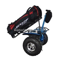 Less Cost CE approved Electric Golf Cart factory