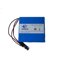 Li-Polymer Battery Pack For Power Tools , Electric Golf Cart