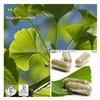 Ginkgo Biloba Leaf Extract 24% 6% 5ppm