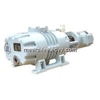 ZJ-300DV Roots Vacuum Pump with low power consumption