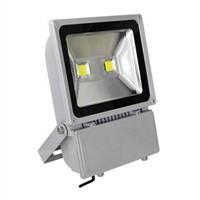 COB 100W LED Flood Lighting/Street Light/Tunnel Lamp/Outdoor Light