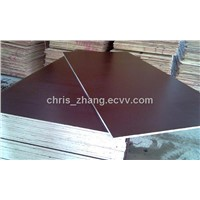 Concrete Formwork Shuttering Plywood