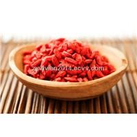 Dried goji berry 180 from Ningxia China