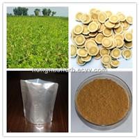 HHerb 100% natural 5% astragaloside iv/ 50% polysaccharide astragalus extract