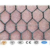 HOT SALE chicken wire mesh ISO9001 factory