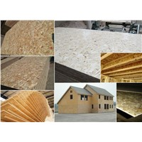 High quality OSB/Oriented Strandboard for construction