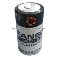 Lithium D Cell 3.6 V 19.0 Ah High Capacity Cylindrical Cell Battery