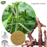 Nettle Leaf Extract Beta-Sterols