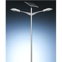 les solar street light with Yinli solar panel