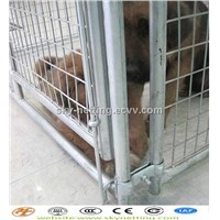 Portable Welded Panel/Chain Link Dog Run Fence