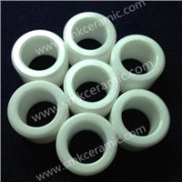 Aluminum Oxide ceramic plunger