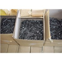 1-3/4'' Cement Nail / Concrete Nail / Steel Nail Factory