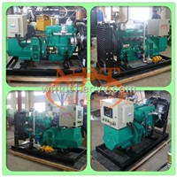 CE Approved 30KW biogas generator set