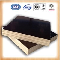 GIGA poplar melamine hardwood grades ply sheets/plywood floors