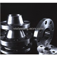 Stainless Steel Flanges Stainless Flange