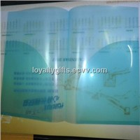pp file folder be used for business promotional