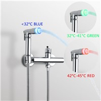 Superfaucet Bathroom Bidet Faucet Bidet Toilet Seat Toilet Bidet Shower Set  with LED 1.5m Hose Shower Handheld Bidet