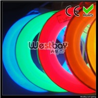 ultra white 24V led neon flex at 16*27mm, 216leds each meter, neon flex lights for DIY decoration