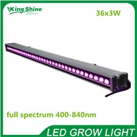 New 108W(36x3w) full spectrum supplementary led grow light for greenhouse tropical plant with leaves and fruits 60 90 beam angle
