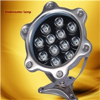 24VAC input 3W/6W/9W/12W IP68 water proof led underwater light ,stainless steel led pool light with tempered glass