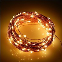 10M 12V LED String Lights Wire Lights Waterproof Starry String Lights Rope Lights for Garden Xmas Outdoor Decor   CLH