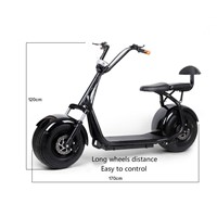 Harley electric bicycle scooter car electric balance Adult walking ebike lithium battery 48V
