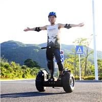 China Good Quality Electric Scooter Segway ESOI(L2)