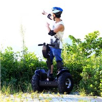 Two Wheel Balance Stand up Electric Chariot Segway Scooter