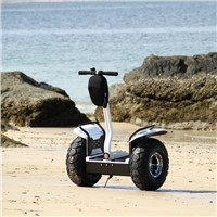 Segway Self-Balancing Electric Chariot Personal Transporter Scooter ESOI(L2)