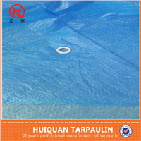 super grade clear tarpaulin reinforced with eyelet