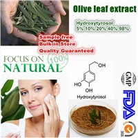 100% Natural Olive Leaf Extract 10%-50% Oleuropein 98% Hydroxytyrosol