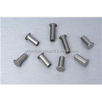 Excellent Quality! Manufacturer Blind Rivet/Aluminium Blind Rivets (Factory) in Stock
