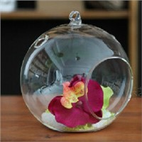 Transparent Glass Ball Terrarium Candle Holder Creative Glass Home Decorative