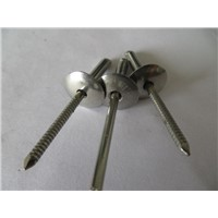 China Stainless steel open type large cap blind rivets
