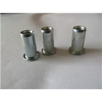 China Extended rivet nuts,special rivet nuts