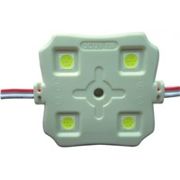High Brightness 4PCS SMD5050 LED Module with CE ROHS