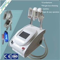 vacuum cryolipolysis weight loss product with 2 handles