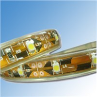 DC12V 60 LED/M Strip Lights with 3528 LED CE ROHS Approved