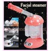 Facial Ion Ozone Steamer Moisture Acne Anti Aging Skin Care Beauty Spa Machine