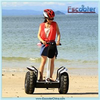 2 wheel self balance electric scooter mobility scooter