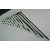 2-1/2'' Electro Galvanized Common Wire Nail