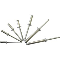 DIN7337 Aluminium/Steel/Stainless Steel Rivet