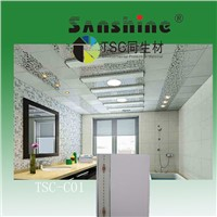 new China pvc panel colour for wall