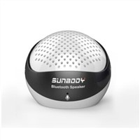 Portable Mini Bluetooth Speaker with V2.1+EDR Standard (S640-BT)