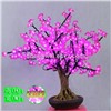 0.8m Pink Color Mini LED Cherry Blossom Christmas New Year Decoration Tree